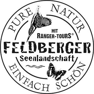 Logo-FS-deutsch
